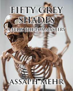 Fifty Grey Shades